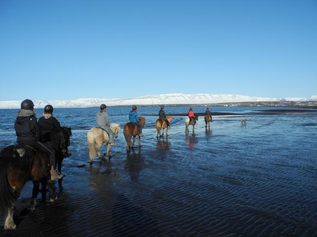 Skagafjörður et Sauðárkrókur