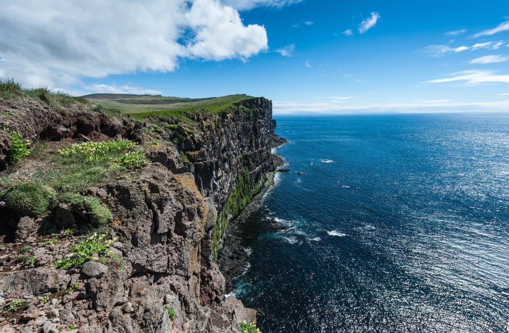 Protéger les macareux d'Islande